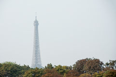 Eiffel en automne Photos stock