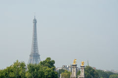 Eiffel in green. Eiffel Tower rising from the green trees in Paris, France Royalty Free Stock Images