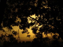 Eiffel through Leaves. View on Eiffel Tower through tree leaves, from Montmartre. Sunset stock photos