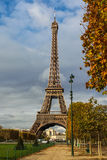 Eiffel. In paris stay the eiffel midden of a park Royalty Free Stock Photos