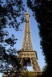 eiffel paris torn Royaltyfri Fotografi
