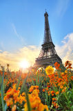 Eiffel in spring Royalty Free Stock Photos