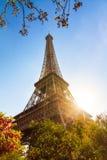 Eiffel spring sunrise Stock Photo