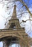 Paris - Eiffel står hög Arkivbild