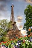 Eiffel torn i fjädertid, Paris, Frankrike Royaltyfria Foton