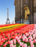 Eiffel tour and statues of Trocadero Stock Photography