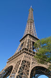 Eiffel tower. In France, Paris Royalty Free Stock Image
