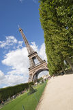 Eiffel tower. View of the Eiffel tower in Paris Royalty Free Stock Image