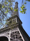 Eiffel tower. The eiffel tower in paris, france Royalty Free Stock Photography