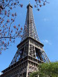 Eiffel tower. Famous landmark in Paris Royalty Free Stock Photos
