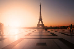 Free Eiffel Tower Royalty Free Stock Image - 22042536