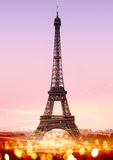 Eiffel Tower. Romantic twilight in Paris, with the Eiffel Tower Royalty Free Stock Photo