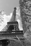 Eiffel Tower. B&W image of Eiffel Tower in Paris, France stock image