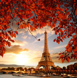 Eiffel Tower with autumn leaves in Paris, France. Famous Eiffel Tower with autumn leaves in Paris, France stock photography
