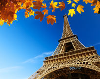 Eiffel tower in autumn Royalty Free Stock Images