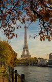 The Eiffel tower and autumnal trees in the foreground. Royalty Free Stock Photo