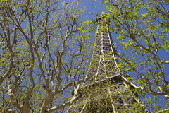 Eiffel Tower. Behind trees with blue sky Stock Photo