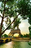 Eiffel Tower behind the trees royalty free stock photography