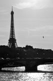 The Eiffel Tower in black and white Royalty Free Stock Photos