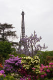 Eiffel tower with blossom branches Stock Photo