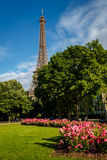 Eiffel Tower and Champs de Mars Royalty Free Stock Image