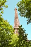 Eiffel Tower framed by trees stock photography