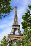 Eiffel tower in the embrace of nature Stock Photos