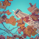 Eiffel Tower In The Fall Royalty Free Stock Image