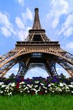 Eiffel Tower with flowers, Paris, France Stock Image