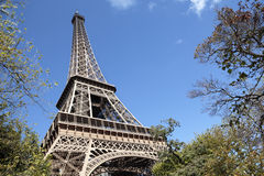 Eiffel Tower framed by trees, blue sky copy space, low angle view Royalty Free Stock Images