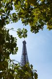 Eiffel tower framed in trees during sunny summer day stock photography