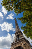 Eiffel Tower through green trees Stock Images