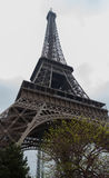 Eiffel Tower from Low Angle Stock Photos