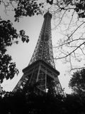 Eiffel tower...nature! royalty free stock photos