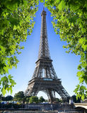 Eiffel Tower and nature Royalty Free Stock Photos