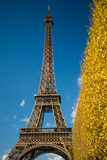 Eiffel Tower over blue sky and fall leaves Stock Photography