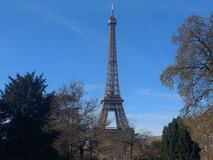 Eiffel tower over the trees in Paris royalty free stock photos