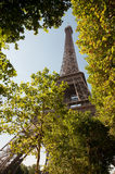 Eiffel tower in Paris. Low view of Eiffel tower from Champs du Mars Royalty Free Stock Images