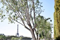 Eiffel Tower, Paris Stock Image