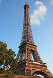 Eiffel Tower Royalty Free Stock Photos