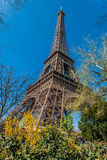 The eiffel tower paris city France Stock Photos