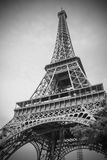 The Eiffel Tower, Paris royalty free stock photo