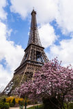 Eiffel Tower in Paris France, Famous Tourism Landmark Royalty Free Stock Photo