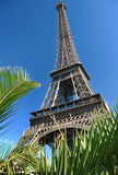 The Eiffel Tower, Paris, France Royalty Free Stock Photo