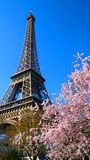 Eiffel Tower in Paris, France Stock Photography