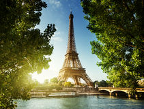 Eiffel tower, Paris. France Royalty Free Stock Photo