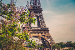 The Eiffel Tower in Paris, France. Royalty Free Stock Images