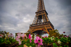The Eiffel Tower in Paris, France. During winter fall time Royalty Free Stock Photography