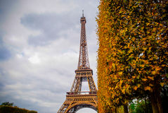 The Eiffel Tower in Paris, France. During winter fall time Royalty Free Stock Photo