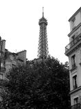 Eiffel tower - Paris Royalty Free Stock Photography